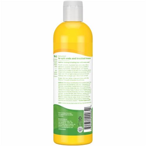 Alba Botanica® Hemp Seed Oil Smooth & Soothe Shampoo Perspective: back
