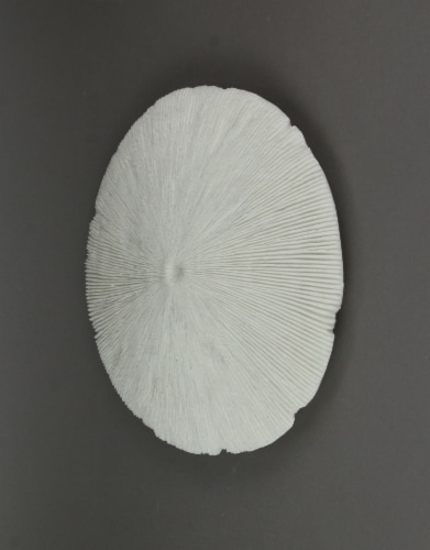White Sandstone Finish Mushroom Coral Wall Sculpture 13 Inch Diameter Perspective: back