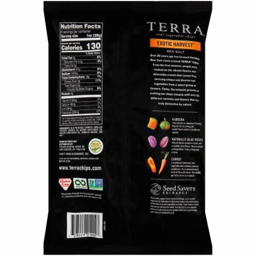 Terra Exotic Harvest Sea Salt Vegetable Chips Perspective: back