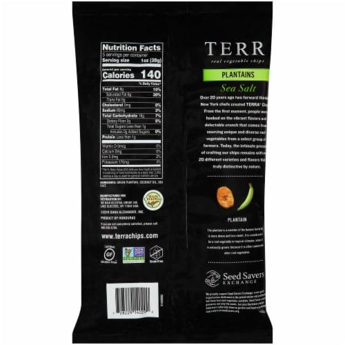 Terra Plantains Sea Salt Chips Perspective: back