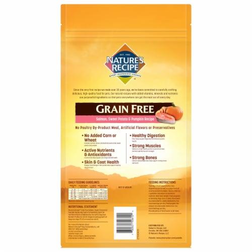 Nature's Recipe® Grain Free Salmon Sweet Potato & Pumpkin Dry Dog Food Perspective: back