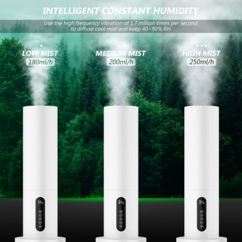 Costway 5.5L Water Tank Quiet Ultrasonic Cool Mist Humidifier w/ Timer Remote Control Perspective: back