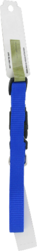 Alliance Blue Small Dog Collar Perspective: back