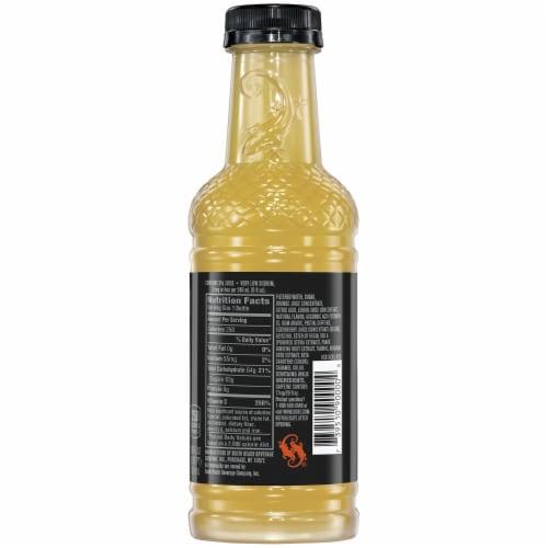 SoBe Elixir® Citrus Energy Flavored Beverage Perspective: back