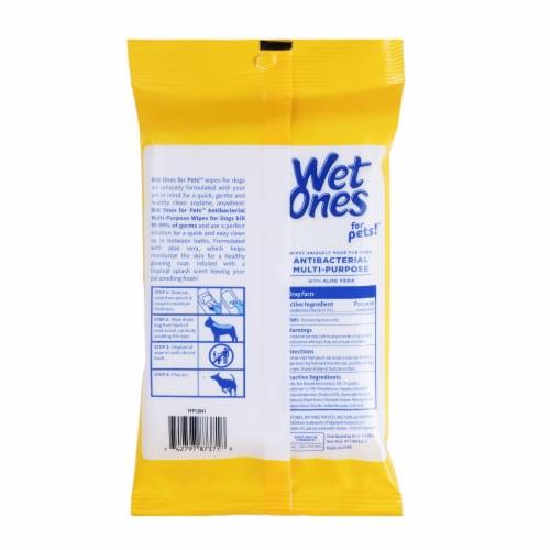 Wet Ones for Pets Tropical Splash Antibacterial Multipurpose Wipes Perspective: back