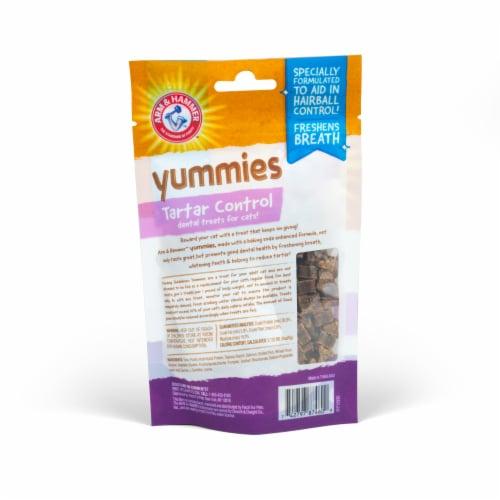 Arm & Hammer Yummies Tartar Control Extra Small Cat Treats Perspective: back