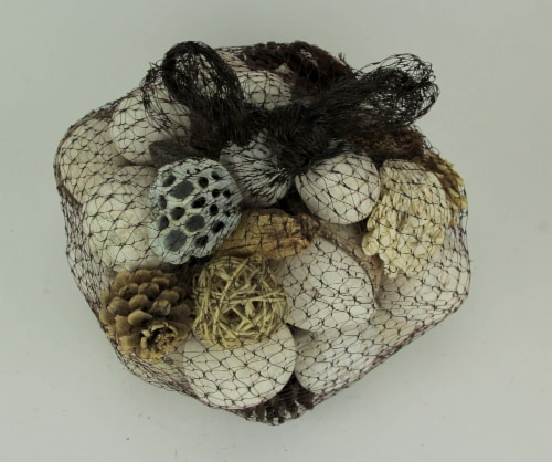Neutral White Decorative Mushroom Mix Assorted Dried Botanicals In a Bag Perspective: back
