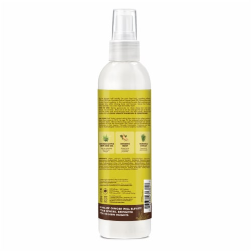 Shea Moisture Cannabis Sativa Seed Oil Lush Length Lite Leave-In Hair Treatment Perspective: back