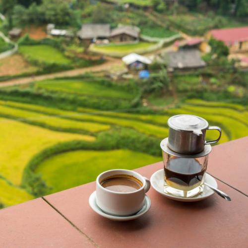 Premium Kaya Kopi Lam Dong Vietnam Energy Robusta Arabica Roasted Ground Coffee Beans 12 oz Perspective: back