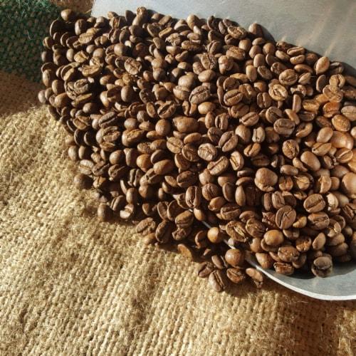 Premium Kaya Kopi Tarrazu Costa Rican Geisha Arabica Roasted Whole Coffee Beans 12 Oz Perspective: back