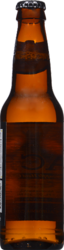 Ace Pineapple Hard Cider Perspective: back