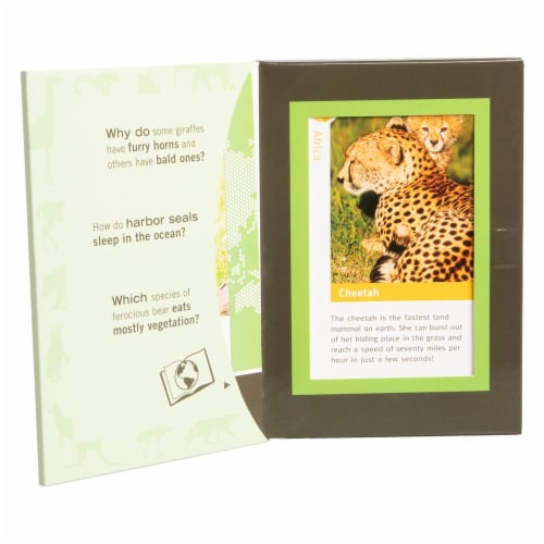 Bird Cage Press Wild Cards, Baby Animals Perspective: back