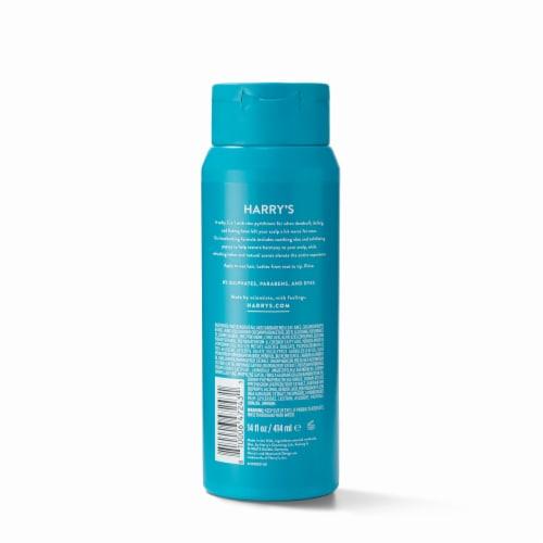 Harry's Anti-Dandruff 2-in-1 Shampoo & Conditioner Perspective: back