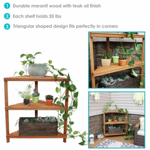 Sunnydaze Meranti Wood Teak Oil Finish 3-Tier Indoor/Outdoor Corner Plant Stand Perspective: back