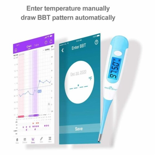 Easy@Home Digital Basal Thermometer, EBT-100 Perspective: back
