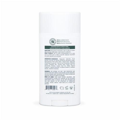 Schmidt' Sage + Vetiver Deodorant Spray Perspective: back