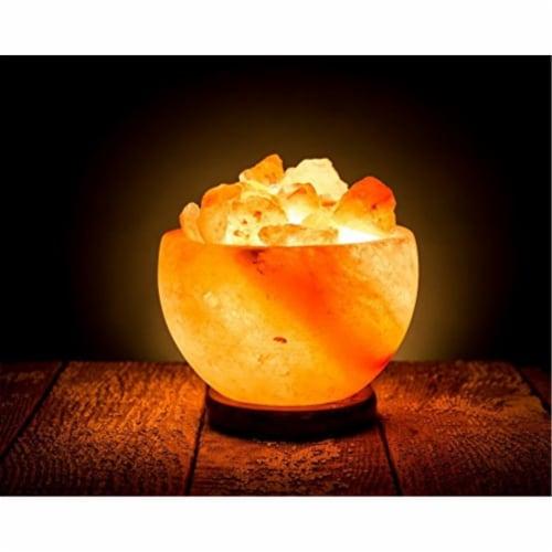 Natural Himalayan Pink Salt Fire Bowl Lamp Perspective: back
