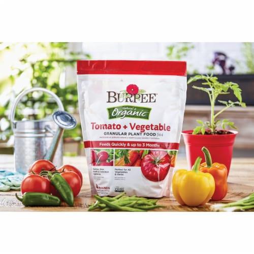 Burpee 7504046 4 lbs Tomato & Vegetable Granules Plant Food Perspective: back