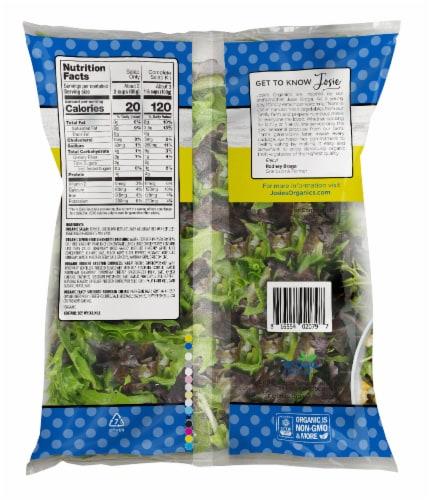 Josie's Organics Lemon Herb Premium Salad Kit Perspective: back