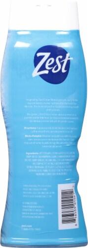 Zest® Ocean Breeze Body Wash Perspective: back