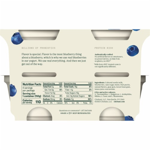 Chobani® Blueberry on the Bottom Greek Non-Fat Greek Yogurt Perspective: back