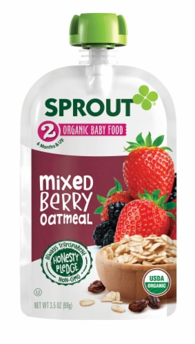 Sprout Organic Mixed Berry Oatmeal Stage 2 Baby Food Perspective: back