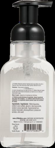 J.R. Watkins Aloe & Green Tea Foaming Hand Soap Perspective: back