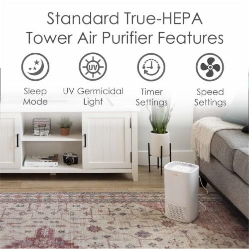 Crane True HEPA UV Air Purifier Perspective: back