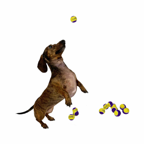 Midlee Squeaky Mini Tennis Ball for Dogs 1.5 - Pack of 12 (Yellow/Purple) Perspective: back