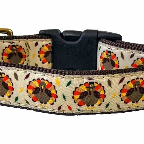 Midlee Thanksgiving Turkey Buckle Dog Collar- Made in The USA (Medium) Perspective: back