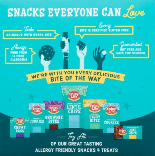 Enjoy Life™ Gluten-Free Berry Medley Breakfast Ovals Perspective: back