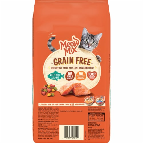 Meow Mix Grain Free with Wild Salmon Dry Cat Food Perspective: back