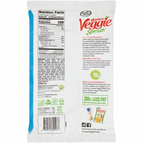 Sensible Portions® Garden Veggie Straws Zesty Ranch Vegetable and Potato Snack Perspective: back