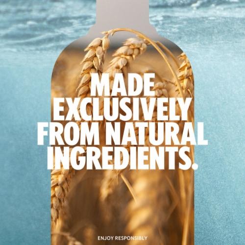 Absolut® Citron Vodka Perspective: back