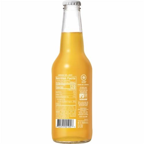 IZZE Sparkling Clementine Flavored Juice Drink Perspective: back