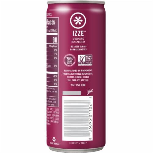 IZZE Sparkling Juice Beverage Blackberry Flavored Juice Drink Perspective: back