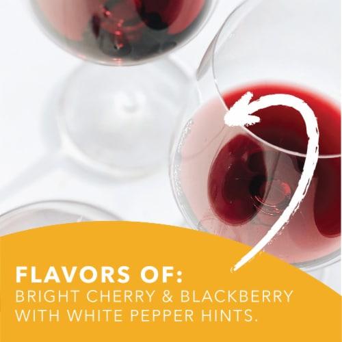 Pinetti Notte Primitivo Perspective: back