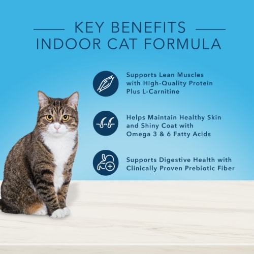Blue Buffalo True Solutions Fab Feline Chicken Natural Indoor Adult Dry Cat Food Perspective: back