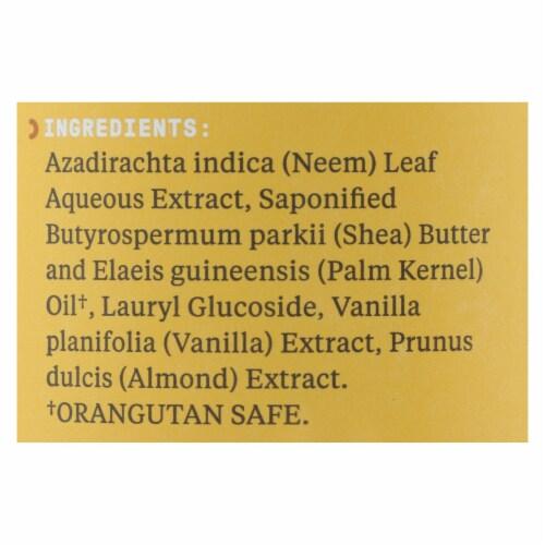Alaffia - African Black Soap - Vanilla Almond - 16 fl oz. Perspective: back