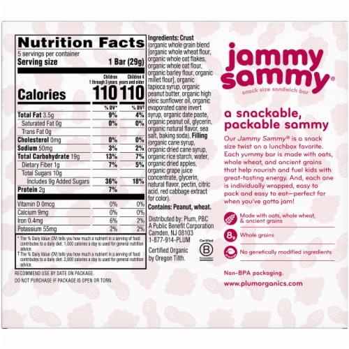 Plum Organics Peanut Butter & Grape Snack Size Sandwich Bar Perspective: back