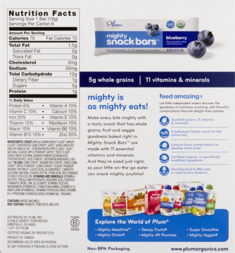 Plum Organics Blueberry Mighty Snack Bars 4 Count Perspective: back