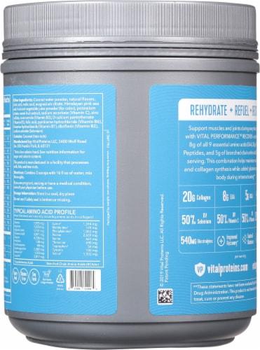 Vital Performance™ Lemon Grape Recover Powder Perspective: back