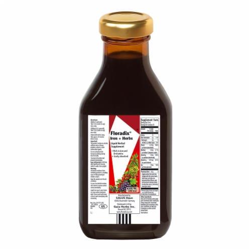 Floradix Iron + Herbs Liquid Herbal Supplement Perspective: back