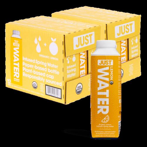 JUST Water Lemon Infused Fruit Flavored Spring Water 24 Pack (16.9 fl oz) Perspective: back