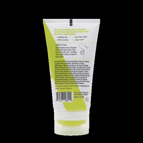 Type:A® The Visionary Clean Crisp Citron Aluminum Free Deodorant Cream Perspective: back