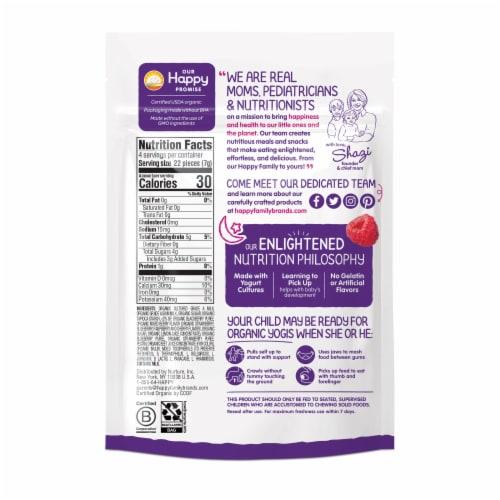 Happy Baby® Organics Organic Yogis Mixed Berry Freeze-Dried Yogurt & Fruit Baby Food Snacks Perspective: back