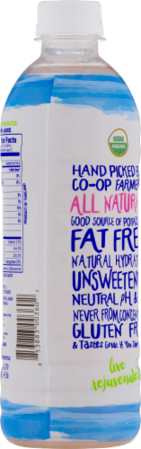 C2O Pure Organic Coconut Water Perspective: back