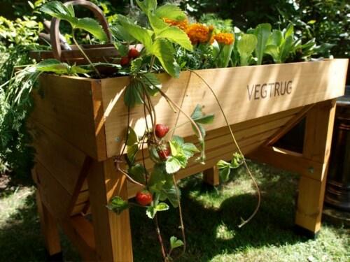 VegTrug Small Raised Bed Planter - Natural FSC 100% Perspective: back