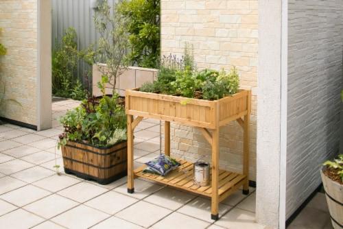 VegTrug Herb Garden Planter Perspective: back