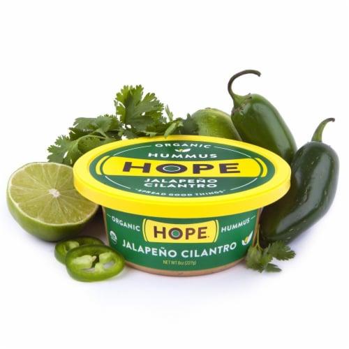 Hope Foods Organic Jalapeno Cilantro Hummus Perspective: back